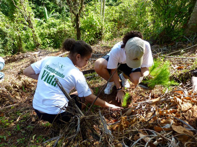 "Volunteers attending the ""4th Reforestation Day"" in collaboration with the Ministry of Environment in Villa Altagracia, San Cristobal Province, in the southern area of Dominican Republic."